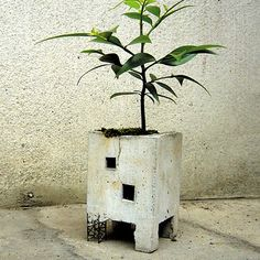 """Truss Planter  by MollaSpace    < Return to Molla Space  16  0        $41fab        $58 retail price      Quantity      Add to Cart    Like the ruins of an abandoned building, reclaimed by nature, this cement planter by Pull + Push is a reminder that everything has its chance to bloom and everything crumbles. Clever details like tiny colored glass windows and """"exposed"""" reinforcing beams bring a fairytale feeling to this piece. Bring joy back to the land by planting flowers in the ruins. Can…"""
