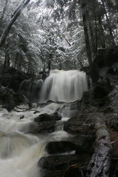 Next time you're driving through the PA Wilds, make a stop at Potter's Falls in Potter County to enjoy a beautiful winter scene. #PASnowDays