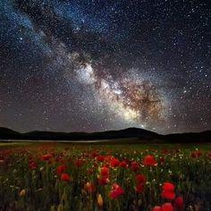 439 отметок «Нравится», 6 комментариев — Taner Göçer (@astro_taner) в Instagram: «Tulips and Milky way..! Very nice.. by Altin Nezha»