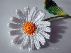 Beszéljünk virágnyelven!  Mit üzen a Margaréta?    Mirtusz : Virágnyelv    Horgolt virág, horgolt margaréta Dandelion, Knitting, Crochet, Floral, Flowers, Plants, Amor, Crochet Hooks, Florals
