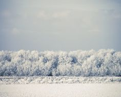 Wishes for winter by Michal Nir on Etsy