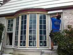 1000 Images About Bow Window Replacement Ideas On