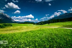 Mieminger Plateau by SimonKirchmair  alps austria blue clouds field flower flowers forest grass grassland green landscape landscapes land