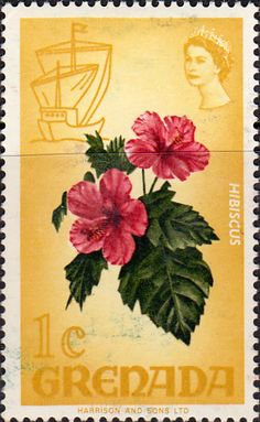 Grenada 1969 First Man on the Moon SG 348 Fine Mint Scott 428 Other Grenada… Royal Mail Stamps, Valley Of Flowers, Stamp Dealers, Buy Stamps, Postage Stamp Art, Rose Of Sharon, You Are The World, Vintage Stamps, Commonwealth