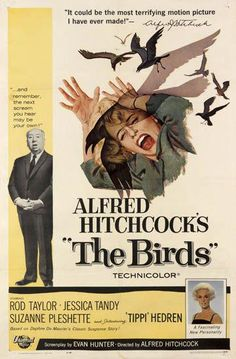 A great poster from The Birds - the unforgettable classic movie from Master of Suspense Alfred Hitchcock! Check out the rest of our excellent selection of Alfred Hitchcock posters! Need Poster Mounts. Classic Movie Posters, Horror Movie Posters, Classic Movies, Film Posters, Old Movie Posters, Jessica Tandy, Scary Movies, Great Movies, Movies Free