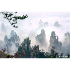 Nature landscape photography - Zhangjiajie National Forest, China, Large Poster size home and Office Wall Decor photograph. (11 CAD) found on Polyvore