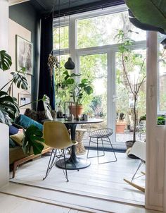 modern sunroom with vintage furnishings and pottend plants. / sfgirlbybay
