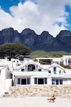 beach bungalows in cape town, south africa. South Africa Beach, Cape Town South Africa, Beautiful Homes, Beautiful Places, House Beautiful, Namibia, Beach Bungalows, Attic Renovation, Attic Remodel