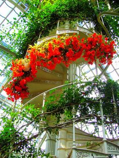 Spiral staircase inside the palm house at Schönbrunn Palace in Vienna, Austria (by mr.gears).