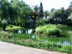 Parque de Santa Catarina/The Catherine Park #madeira#secretmadeira Photo by B.Hermsen