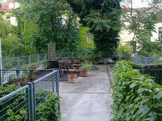 3 Zimmer-Altbauwohnung mit riesiger Terrasse, 92 m², € 1.100,-, (1170 Wien) - willhaben Such Und Find, Patio, Outdoor Decor, Plants, Home Decor, Real Estates, Homes, Decoration Home, Room Decor