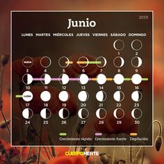 Calendario lunar de junio Moon, Facts, Drop Earrings, Makeup, Paganism, Reiki, Beauty, Moon Phases, Healthy Hair
