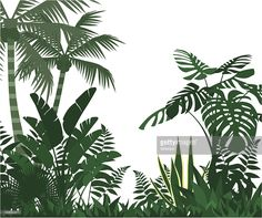the vector illustration of jungle