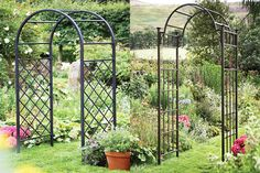 metal arches for gardens - Google Search