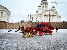 One day itinerary Helsinki One Day, Helsinki, Day Trip, Finland, Stuff To Do, Travel, Outdoor, Outdoors, Viajes