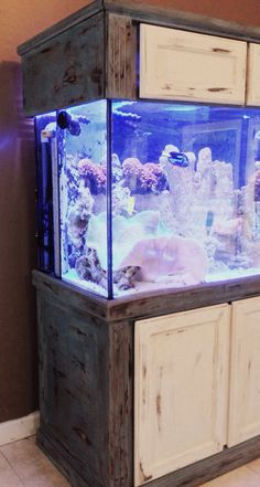 Painted fish tank. Milk paint layered brick red and blue . Coastal style, shabby chic, rustic , heavily distressed