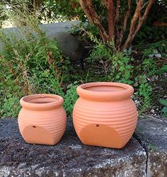 Amazon.com: Newly Designed Set of 2 Different Size Natural Terra Cotta Fallen Pots or Planters or Hanging Pots: Patio, Lawn & Garden