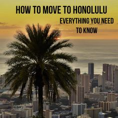 Most recent Screen moving to Oahu Hawaii Style Oahu The hawaiian islands are the single most preferred trip locations on the globe, and also if you've found . Hawaii Surf, Hawaii Life, Hawaii Vacation, Honolulu Zoo, Hawaii Things To Do, Hawaii Travel Guide, Hawaii Pictures, Moving To Hawaii, Hawaii Style