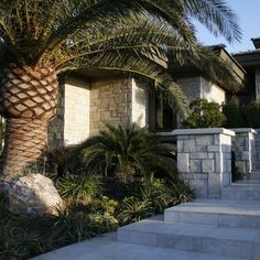 Tropical Landscape Design, Pictures, Remodel, Decor and Ideas - page 71