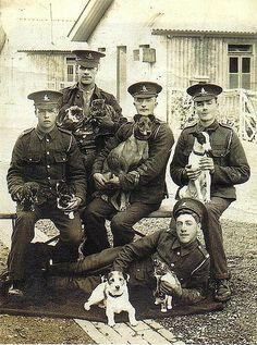 h militairen honden katten by janwillemsen, via Flickr