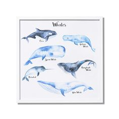 Whale Song Wall Art