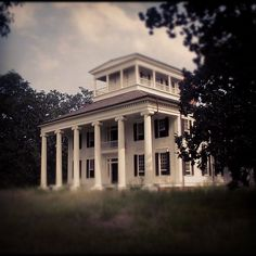 Rosemount Plantation, Forkland Alabama (1832)