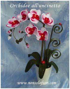 Orchidee all'uncinetto  www.nonsolofiori.com #orchideeuncinetto #orchids #orquideas #orchid #crochet #ganchillo #orchidées #uncinetto #crochetartist #crochetart #artflowers #galleries #artecontemporanea #artwork #natureinspired