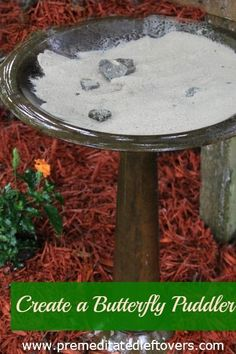How to Create a Butterfly Puddler - Attract butterflies to your yard by creating a butterfly puddler for beautiful butterflies to rest and drink.