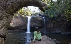 #08 #KhaoYai National Park (*) Easy trails and tours, night safaris and a healthy cast of hornbills and gibbons.