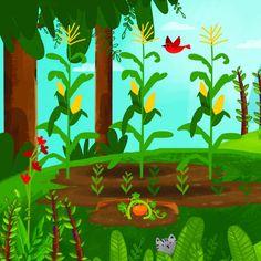 My Little Garden   Free Kids Books Online   Bedtime Stories