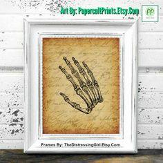 VINTAGE ANATOMY ART Hand Bones Art Anatomy Art by PapercultPrints.Etsy.Com #Etsy #Vintage #Anatomy #Hand #Bones #Art #PrintableArt #VintageAnatomy FrameBy TheDistressingGirl.Com