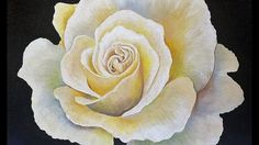 Learn how to paint a beautiful WHITE ROSE with acrylics in this full length LIVE lesson by Angela Anderson. To celebrate hitting 50,000 subscribers I will be...