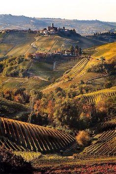 Piemonte.. Wine Country