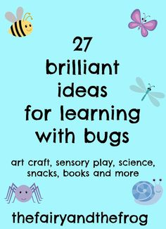 The fairy and the frog: 27 Ideas for kids mini beast and bug activities