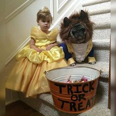 50 halloween costume ideas for kids girls!DIY Halloween costumes for kidsno sewing necessary! internet at large there are so many great ideas for DIY Halloween costumes out there. Chien Halloween, Halloween Mignon, Halloween Bebes, Clever Halloween Costumes, Cute Costumes, Baby Costumes, Halloween Fun, Costume Ideas, Infant Halloween