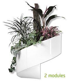 Modul'Green - Pot pour plantes mural Design - Intérieur / Extérieur - Blanc Green Turn http://www.amazon.fr/dp/B008IEIHN2/ref=cm_sw_r_pi_dp_48DXub1E64ZTP