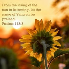 Encouraging Verses, Biblical Quotes, Religious Quotes, Bible Verses Quotes, Bible Scriptures, Spiritual Quotes, Faith Quotes, God Is Amazing, God Is Good
