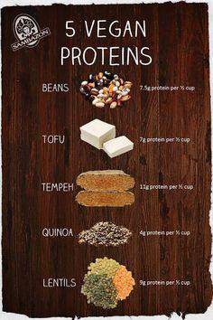 5 vegan proteins