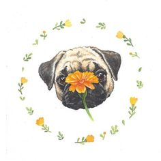 need a pug tattoo one day