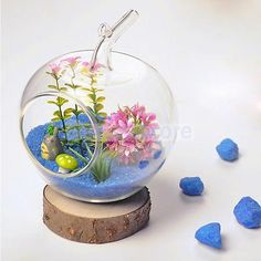 Hanging Glass Flowers Plant Vase Terrarium Container Home Garden Apple Decor
