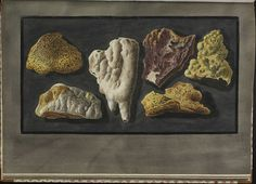 Plate 44, specimens from the crater of Mt. Vesuvius by peacay, via Flickr