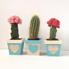 Some tracing, painting, and planting create a cute little trio of heart-adorned succulents.