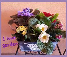 I love garden