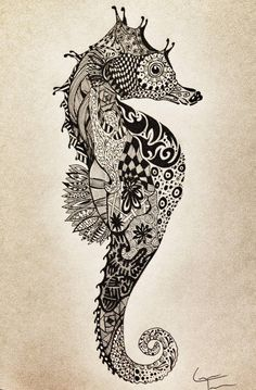 Seahorse — Zentangle by Laura Telfer