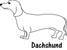1000 images about puppy designs on pinterest dachshund beagles and beagle tattoo