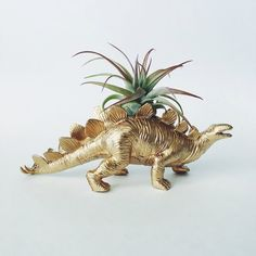 Large Gold Stegosaurus Dino Planter with Air Plant; Dinosaur Planter; Stegosaurus Dinosaur Planter; Air Plant; Tillandsia; Dino Planter by TwoTreesBotanicals on Etsy https://www.etsy.com/listing/217568463/large-gold-stegosaurus-dino-planter-with