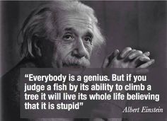 Einstein said IT!