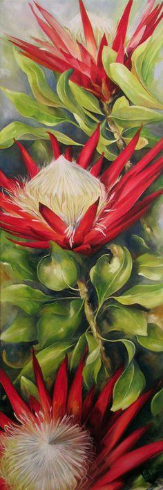 #Proteas#oilpaintings#floralart 'Succession' Painted by Ellie Eburne
