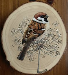 mazurek (Passer montanus) | Monika Jakubska | Flickr Wood Pallet Art, Wooden Art, Wood Painting Art, Tole Painting, Wood Ornaments, Bird Illustration, Christmas Wood, Watercolor Bird, Art Journal Inspiration