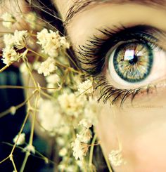 This photo is a close up. I chose this photo because I think the eye shown in the photo is really cool
